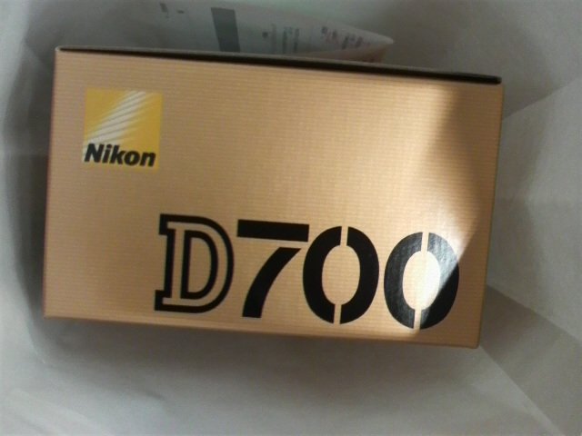 P1000824
