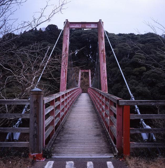 2_tsubakikoen_001